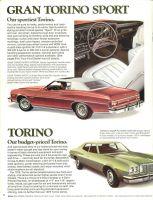 torino7506