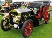 1906pungfinchlimited1